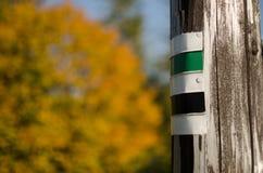 绿色和黑人游人在木签字变苍白 免版税库存图片