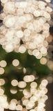 绿色和轻的Bokea 免版税库存照片