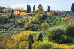 绿色和黄色庭院在佛罗伦萨邻里 库存图片