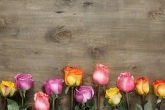 紫色和黄色玫瑰,把在木背景的礼物装箱 库存图片