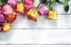 紫色和黄色玫瑰,把在白色木背景的礼物装箱 库存照片