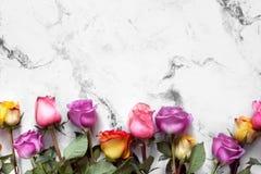 紫色和黄色玫瑰,把在白色背景的礼物装箱 库存图片
