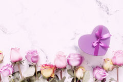 紫色和黄色玫瑰,把在白色背景的礼物装箱 免版税图库摄影