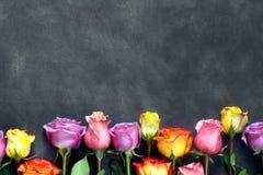 紫色和黄色玫瑰,把在黑背景的礼物装箱 免版税库存照片