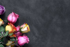 紫色和黄色玫瑰,把在黑背景的礼物装箱 免版税库存图片