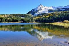 黄色和绿色白杨木、积雪的山和反射高山风景在湖在叶子季节期间 库存图片