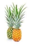 绿色和黄色菠萝 免版税库存照片