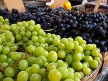 绿色和紫色葡萄束 免版税库存照片
