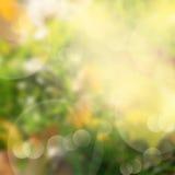 绿色和黄色bokeh背景 免版税库存图片
