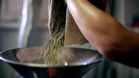 绿色咖啡豆涌入烧烤平底锅 影视素材