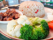 绿色咖喱饭 免版税库存图片