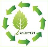 绿色商标传染媒介 免版税库存照片