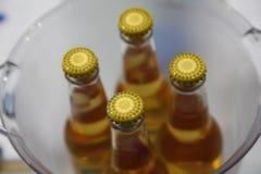 黄色啤酒瓶上面  免版税库存图片