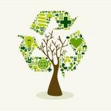 绿色回收标志概念树 免版税图库摄影