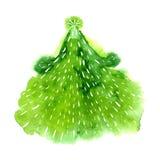 绿色圣诞树的水彩例证 容易的设计编辑要素导航 免版税库存照片