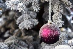 紫色圣诞节中看不中用的物品 免版税图库摄影