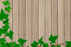 绿色在木纹理特写镜头背景留下框架 库存图片