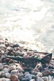 黑色在的被反映的太阳镜石头 从玻璃的阴影 阳光 背景概念框架沙子贝壳夏天 免版税库存照片