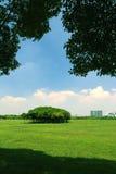 绿色地产 库存照片