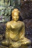 黄色坐的Budha图象 库存图片
