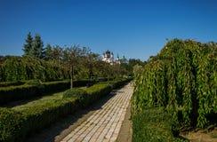 绿色城市公园在晴朗的夏日 库存图片