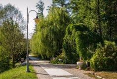 绿色城市公园在晴朗的夏日 免版税库存图片