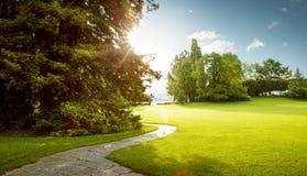 绿色城市公园美好的全景在黎明 免版税库存图片