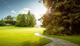 绿色城市公园美好的全景在黎明 免版税库存照片