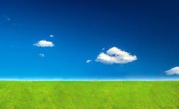 绿色域在夏天 库存照片