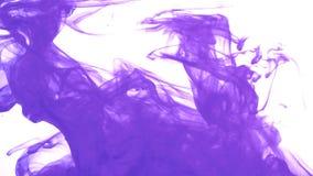 紫色墨水在水中 股票视频