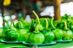绿色夏南瓜南瓜 免版税图库摄影