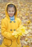 黄色外套的小女孩收集黄色槭树叶子 免版税库存图片