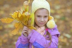 黄色外套的小女孩收集黄色槭树叶子 免版税库存照片
