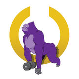 紫色大猩猩 免版税库存图片