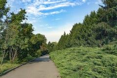 绿色大路 免版税库存照片