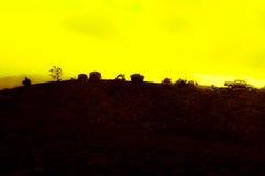 黄色天空 库存图片
