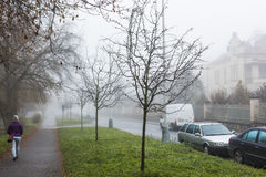 紫色夹克的一名妇女走在一条街道上的在一个有雾的11月早晨 图库摄影