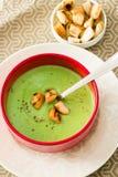 绿色奶油色汤用在上面一个红色板材碗的油煎方型小面包片 库存照片