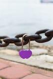 紫色婚礼锁垂悬 免版税库存图片