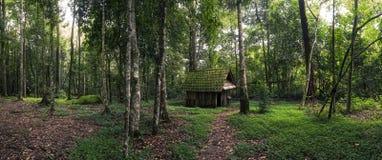 绿色小屋在森林里 库存图片