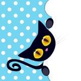 黑色小猫 图库摄影