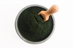 绿色小球藻 免版税库存图片