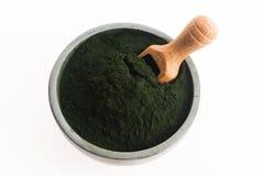 绿色小球藻 库存照片