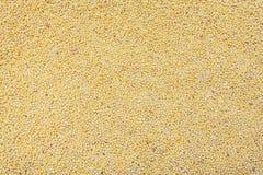 黄色小米谷物背景,纹理 免版税库存图片