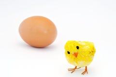 黄色小鸡 免版税库存照片