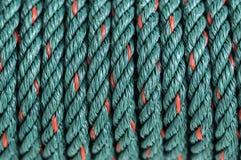 绿色尼龙绳索 库存图片