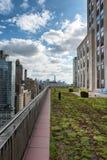 绿色屋顶庭院和纽约摩天大楼 库存照片