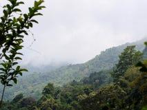 绿色山在北泰国 库存图片