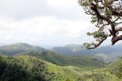 绿色山美丽的景色 库存图片