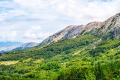 绿色山谷在克罗地亚 免版税图库摄影
